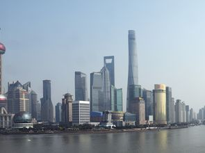 Studie More Than a Market_Skyline Shanghai Pudong_17.jpg(© Jan Siefke)